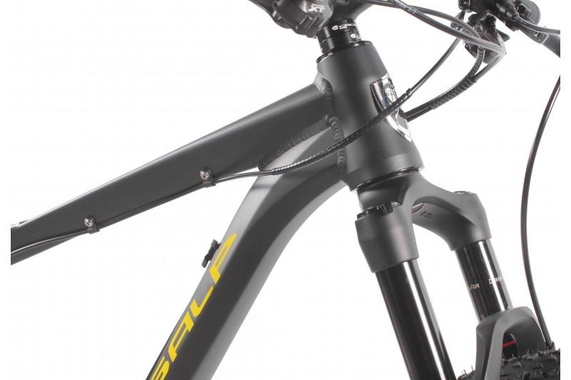 29er Hardtail MTB Ambition Team X12 1.0